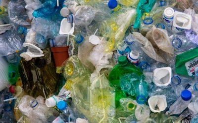 La depurazione biotech dei reflui